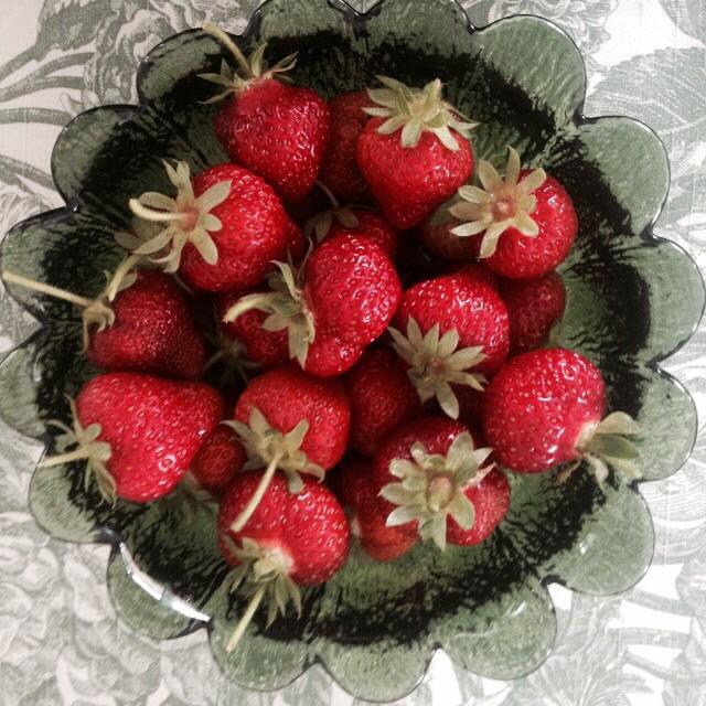 Gode hjemmeavlede bær
