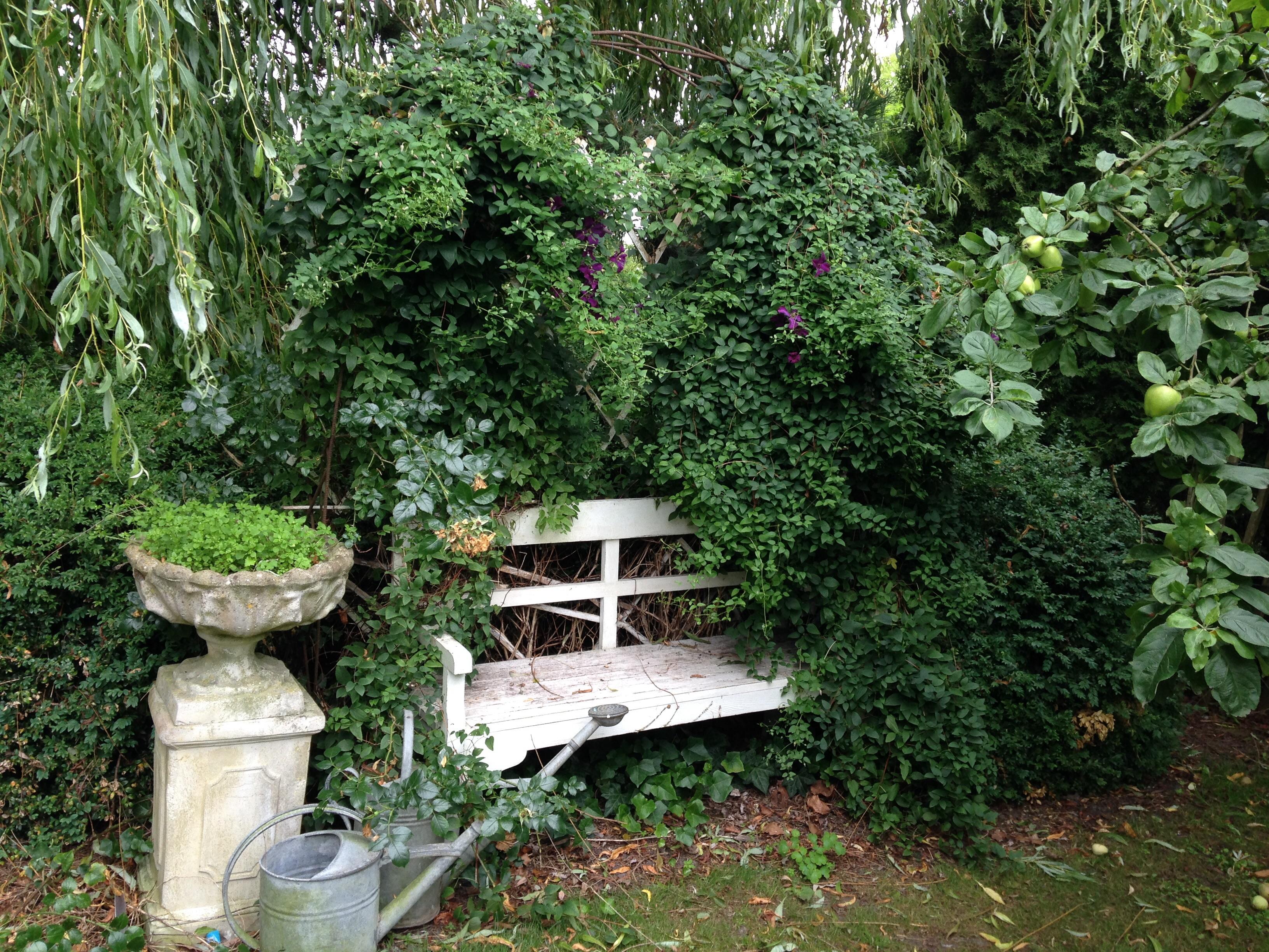 En anden slags have